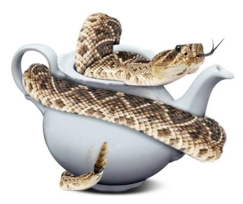 Teapot Snake